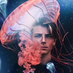 jellyfish ocean water underwater magic freetoedit