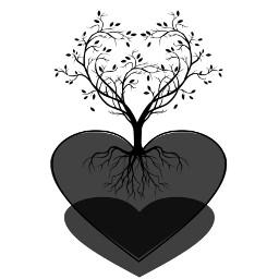 cuore hai freetoedit cuore