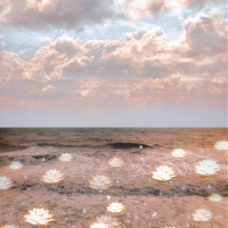 beach clouds beautiful dreamy vibes heypicsart makeawesome flowers freetoedit unsplash