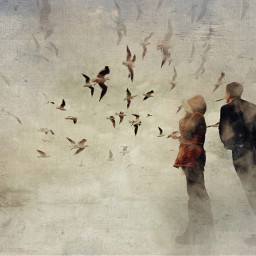 heypicsart iphone mobile flying people coast seagull texture fineart love together dream mood goodvibes onlygoodvibes picsart