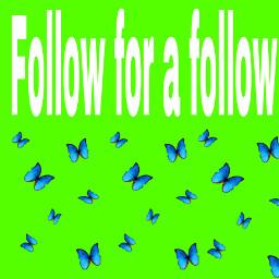 follow4follow freetoedit