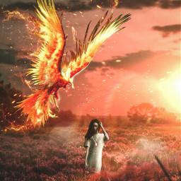 unsplash freetoedit phoenix gril grassland grass fire biganimal manipulation fantasy madebyme madewithpicsart freetoeditremix