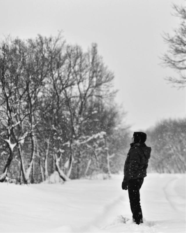 #winter #snow #bw #bnw #blackandwhite #bwphotography #bnwphotography #photography #winterforest #snowy #snowyday #snowyforest #