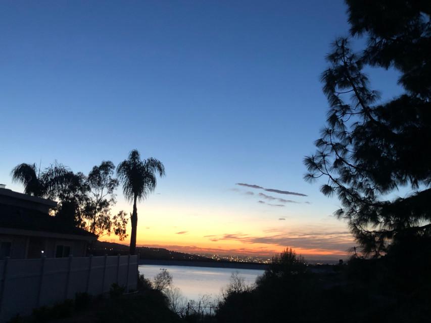 #freetoedit #ig_cameras_united #icu_japan #california #water #palmtrees