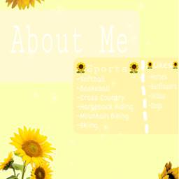 sunflower summer me freetoedit