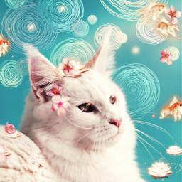 cat srcdoodlecircles doodlecircles freetoedit
