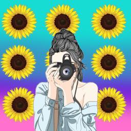 sunflowercontestbyfeli freetoedit