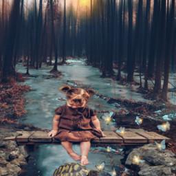 stream nature naturelover littlegirl turtle butterflies myedit myremix madewithpicsart picsarteffects picsartstickers freetoedit