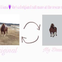 diana edit horse