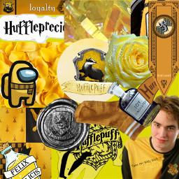 hufflepuff cedricdigory takemebacktomyfather loyalty freetoedit