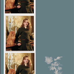 hermionegranger emmawatson harrypotter