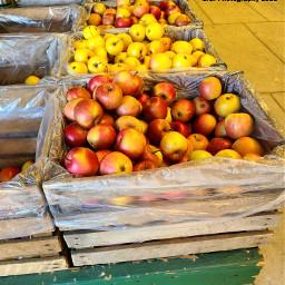 apples farmersmarket food photography egphotography2021
