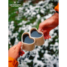humanhand hand holding oneperson closeup occupation day outdoor adult realpeople fingers love lovemug tea hottea cold coldweather