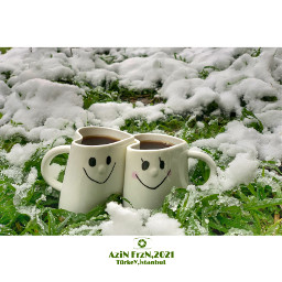 drinks cups mugs refreshment hotdrink coffee snow winter plant nature