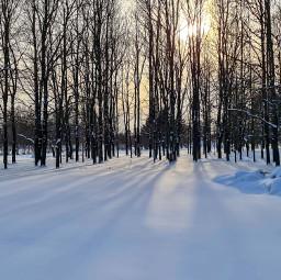 winter freetoedit