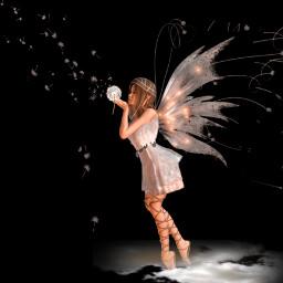 angel wings dandelion dreams blackbackground myedit madewithpicsart picsartstickers picsarteffects freetoedit