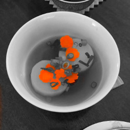 daikon carrots