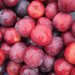 pcfavoritefruitsandveggies favoritefruitsandveggies