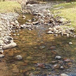 river walker freshair nature