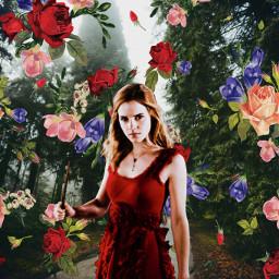 hermionegranger srcflowerpower flowerpower freetoedit