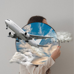 plane sky white clouds birds freetoedit