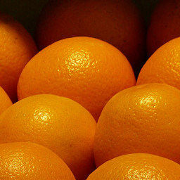freetoedit pcfavoritefruitsandveggies favoritefruitsandveggieshttps