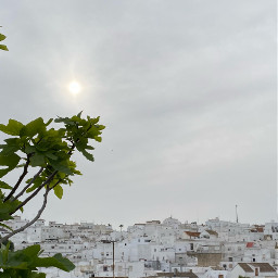 vejer white relax