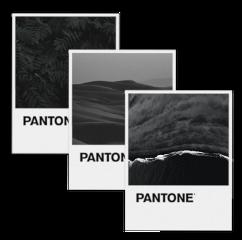 pantone pantonecolors pantoneedit pantoneframe pantonecolor pantoneblack pantoneaesthetic aesthetic aesthetictumblr aestheticedit aestheticsticker black sea beach sand hill leaves freetoedit unsplash