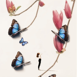 freetoedit flower background butterfly replay myedit madewithpicsart brl2effect