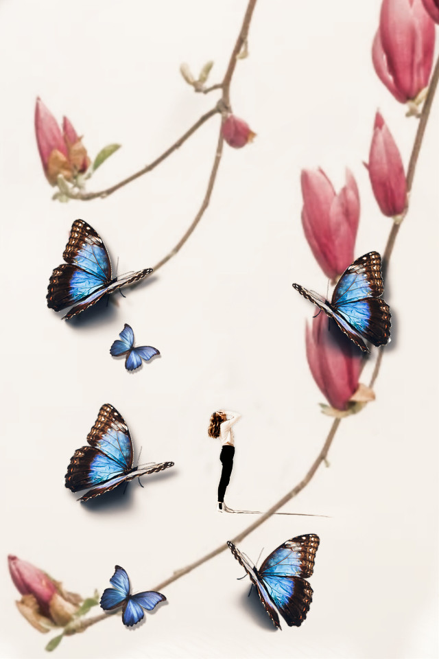 #freetoedit #flower #background #butterfly #replay #myedit #madewithpicsart #brl2effect