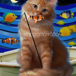 cat colorful cute eccolorfulwaves colorfulwaves freetoedit