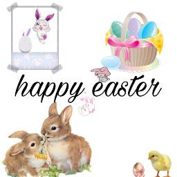 easter bunny newbornchicken eastereggs freetoedit
