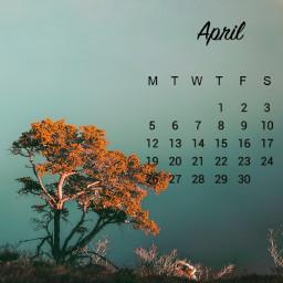 unsplash srcaprilcalendar2021 aprilcalendar2021
