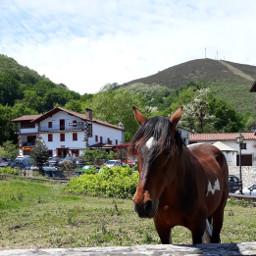 nafarroa xareta horse zaldia basquehouse mountains valley