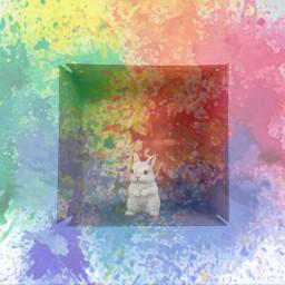 freetoedit ircwhatsinthebox whatsinthebox