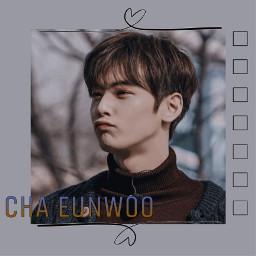 chaeunwoo
