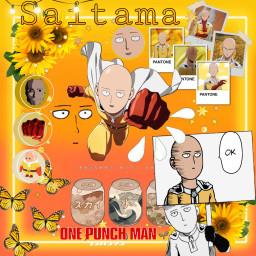 saitama onepuchman freetoedit