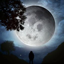 freetoedit surrealistic myedit fullmoon night silhouette light moonlight araceliss sky clouds cloud