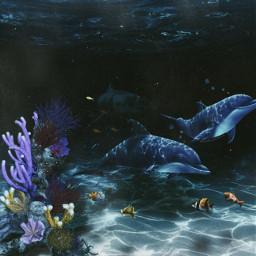 ocean underthesea sealife freetoedit