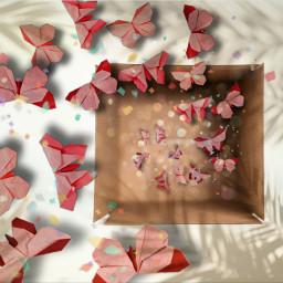 бумага коробка бабочки freetoedit ircwhatsinthebox whatsinthebox