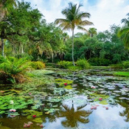 florida tropical lake palmtrees freetoedit