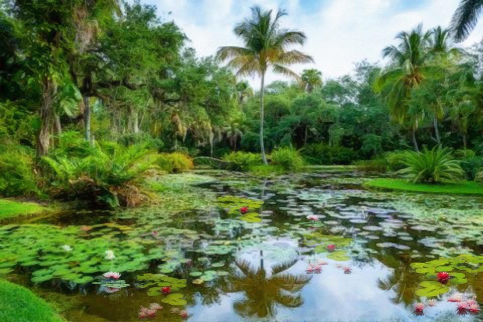 #florida #tropical #lake #palmtrees #freetoedit