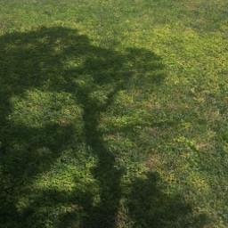 myphotography photographybymargarita pcshadows shadows