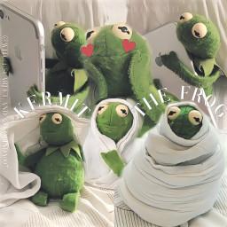 kermitthefrog witch kolinda007 muppets lmao kermit
