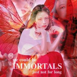kim jisoo kimjisoo blackpink dark red kpopedit design filter kpop graphics movie aesthetic fairy girl kpopidol wings korean singer     uksugar singer