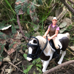 horse schleich realpic nature beauty