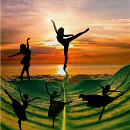 freetoedit bailarina bailarinas ircballerinesilhouette ballerinesilhouette