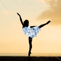 ircballerinesilhouette ballerinesilhouette freetoedit
