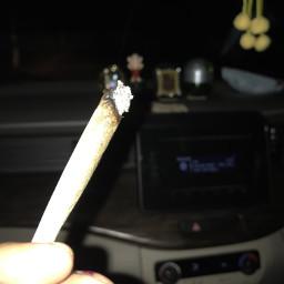 ash smokeweed everyday