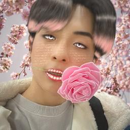 sihun sihunbdc bdc bdckpop kpop manipulation edit pink flowers april